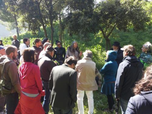 Incontro con Maria Sonia Baldoni sulle erbe spontanee 2017 2