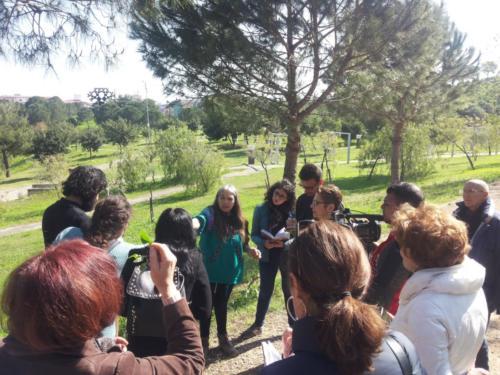 Le erbe spontanee con Maria Sonia Baldoni 2018 1